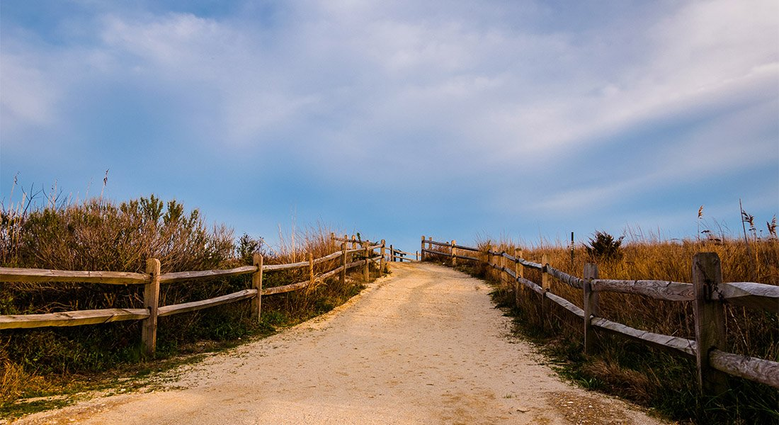 Long sandy path to the beach lined with split rail fence.