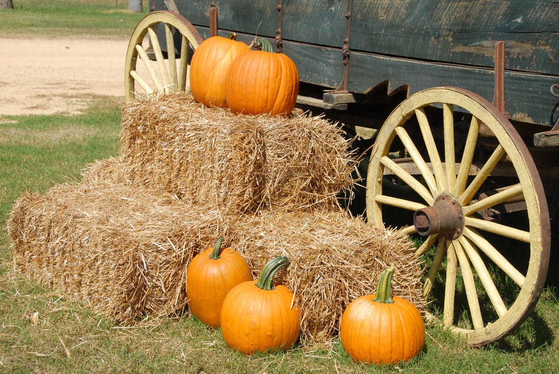 Orange pumpkins resting on hay bales next to a green flatbed wagon.